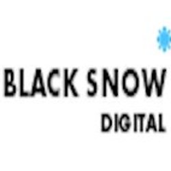 Black Snow Digital