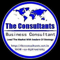 The Consultants - Business  Consultant