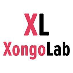 XongoLab Technologies LLP