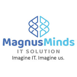 MagnusMinds IT Solution LLP