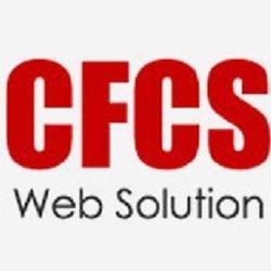 Computer Frontline Consultancy Services