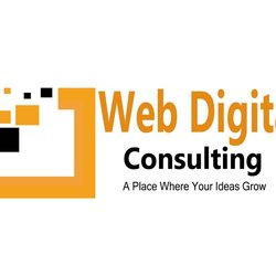 Web Digital Consulting