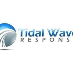 Tidal Wave Response