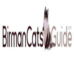 Birman Cats Guide