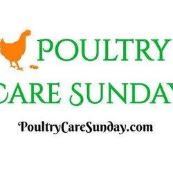 Poultry Care Sunday