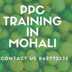 PPC Training in Mohali PPC Training in Mohali