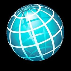 Online Presence Manager Inc.